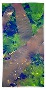 Seaweed Variety Beach Towel