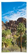 Second Largest Stand Of Fan Palms In The World In Andreas Canyon In Indian Canyons-ca Beach Towel