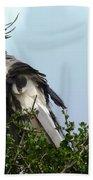 Secretary Bird Beach Towel