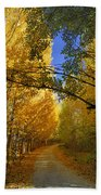 Autumn Secrets Beach Towel