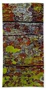 Sedona Carpet Beach Towel