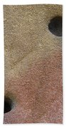 Seed In Rock Beach Towel