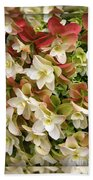 Seeing Double - Hydrangeas Beach Towel