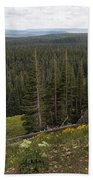 Seeing Forever - Yellowstone Beach Towel