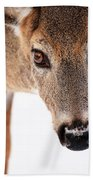 Seeing Into The Eyes Beach Towel