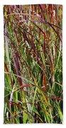 September Grasses By Jrr Beach Towel