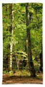 September's Woodlands Beach Towel