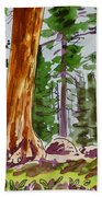 Sequoia Park - California Sketchbook Project  Beach Towel