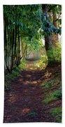 Serene Garden Path Beach Towel