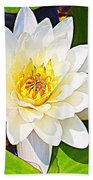 Serenity In White - Water Lily Beach Towel