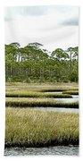 Serpentine Waters Beach Towel