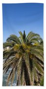 Sestri Levante And Palm Tree Beach Towel