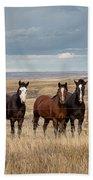 Seven Horses On The Range Beach Towel