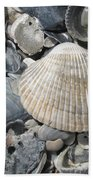 Shades Of Blue Shells Beach Towel