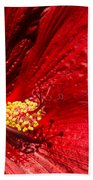 Shades Of Red Beach Towel