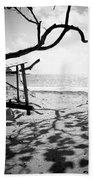Shadow Tree Beach Towel