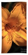 Day Lily Shadows Beach Towel