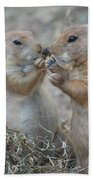 Sharing Is Caring Beach Towel