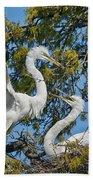 Sharing The Nest Beach Towel