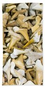Sharks Teeth Beach Towel