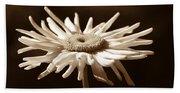 Shasta Daisy Flower Sepia Beach Sheet