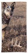 Shed Hunting Beach Towel