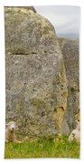 Sheep On A Mountain Pasture Between Granite Rocks Beach Towel