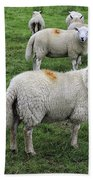 Sheep On Parade Beach Towel