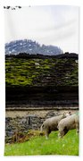Sheeps And Rustic House Beach Towel