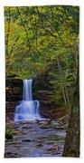 Sheldon Reynolds Falls And Kitchen Creek Beach Towel