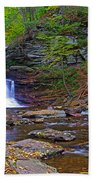 Sheldon Reynolds Falls Autumn Beach Towel