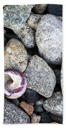Shell On The Shore 1 Beach Towel