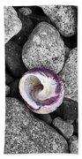 Shell On The Shore 2 Beach Towel