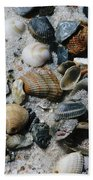 Shells Beach Towel