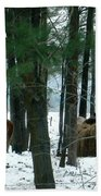 Sheltered In The Trees Beach Towel