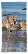Shorebirds Flocking At Bodega Bay Beach Towel