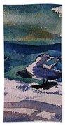 Shoreline Birds Iv Beach Towel