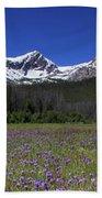 Showy Penstemon Wildflowers Sawtooth Mountains Beach Towel