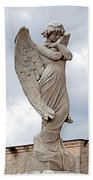 Shy Angel Beach Towel