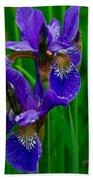 Siberian Iris Beach Towel