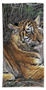 Siberian Tiger Cubs Endangered Species Wildlife Rescue Beach Towel