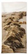 Side Winding Beach Towel