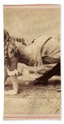 Sideshow Camel Girl, 1886 Beach Towel