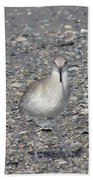 Sidestepping Sandpiper Beach Towel