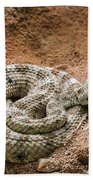 Sidewinder 2 Beach Towel