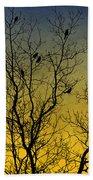 Silhouette Birds Sequel Beach Towel
