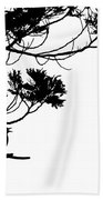 Silhouette Of Singing Common Blackbird In A Tree Beach Towel by Stephan Pietzko