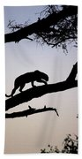 Silhouetted Leopard Beach Towel
