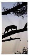 Silhouetted Leopard Beach Sheet