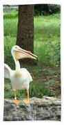 Silly Bird Beach Towel